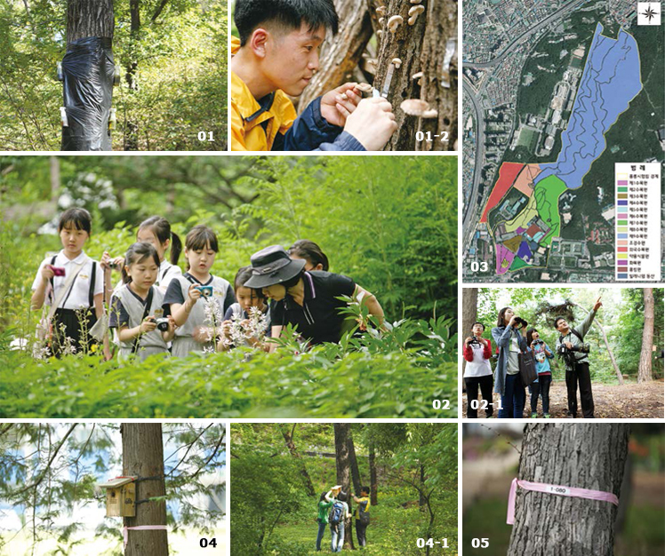 Major activities in the Hongneung Experimental Forest image